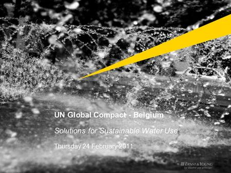 UN Global Compact - Belgium Solutions for Sustainable Water Use Thursday 24 February 2011.