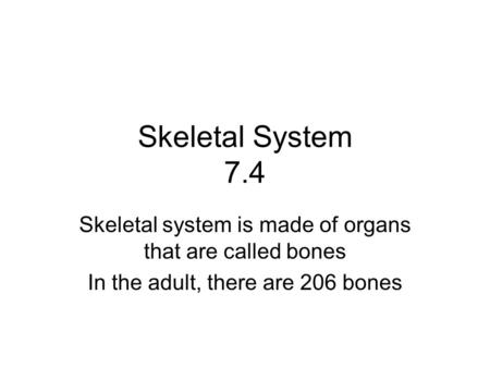 Skeletal System 7.4 Skeletal system is made of organs that are called bones In the adult, there are 206 bones.
