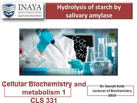 Hydrolysis of starch by salivary amylase Dr. Samah Kotb Lecturer of Biochemistry 2015 Cellular Biochemistry and metabolism 1 CLS 331.