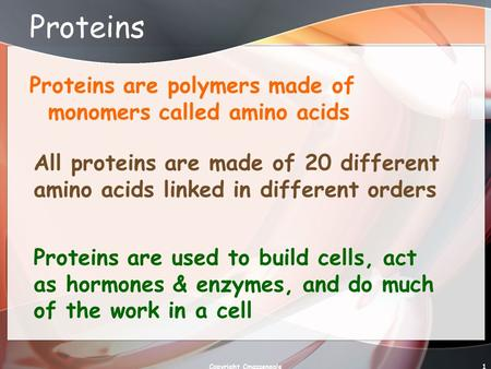 1 Proteins Proteins are polymers made of monomers called amino acids All proteins are made of 20 different amino acids linked in different orders Proteins.