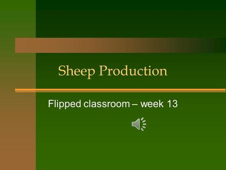 Sheep Production Flipped classroom – week 13 Why choose sheep? n Sheep can survive where cows can't n Sheep will eat problem weeds like Leafy Spurge.