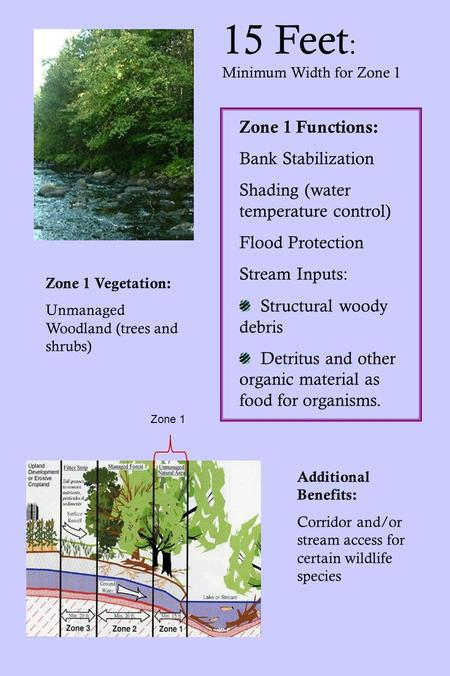 15 Feet : Minimum Width for Zone 1 Zone 1 Functions: Bank Stabilization Shading (water temperature control) Flood Protection Stream Inputs: Structural.