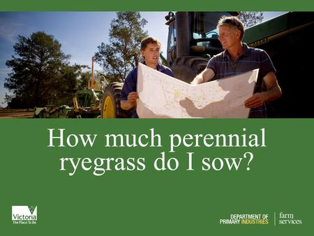 How much perennial ryegrass do I sow?. Today's Plan Strengths and weakness of perennial rye & annual rye Changes to feed supply patterns Water use & WUE.