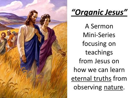 """Organic Jesus"" A Sermon Mini-Series focusing on teachings from Jesus on how we can learn eternal truths from observing nature."