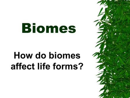 Biomes How do biomes affect life forms?. Biomes: