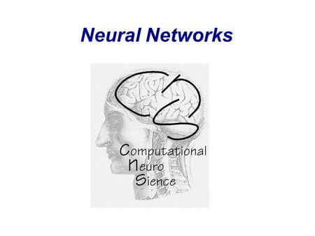 Neural Networks. Molecules Levels of Information Processing in the Nervous System 0.01  m Synapses 1m1m Neurons 100  m Local Networks 1mm Areas /