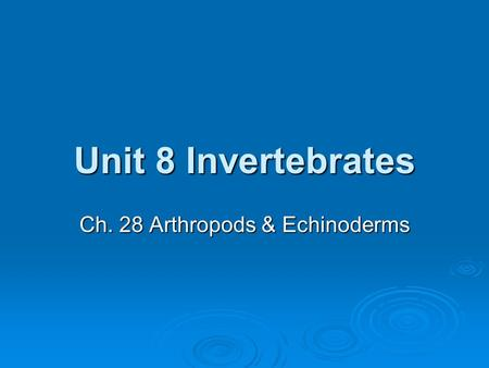Unit 8 Invertebrates Ch. 28 Arthropods & Echinoderms.
