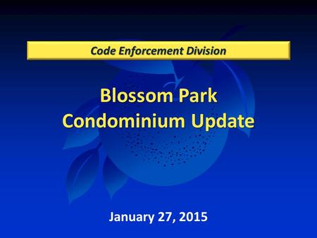 Blossom Park Condominium Update Code Enforcement Division January 27, 2015.
