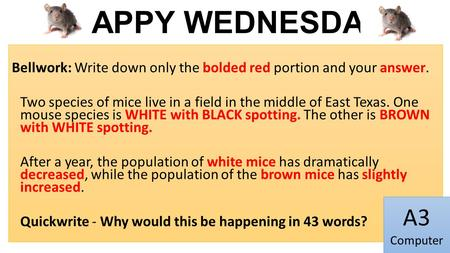 HAPPY WEDNESDAY Bellwork: Write down only the bolded red portion and your answer. Two species of mice live in a field in the middle of East Texas. One.