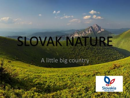 SLOVAK NATURE A little big country. THE NATIONAL PARK OF HIGH TATRAS THE OLDEST PARK IN OUR AREA NORTH OF SLOVAKIA UNIQUE PROTECTED AREA FLORA AND FAUNA.