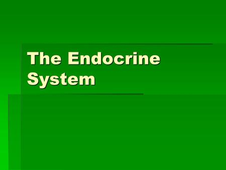 The Endocrine System. Think… Pair… Share…  How does the body grow during adolescence?