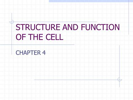 STRUCTURE AND FUNCTION OF THE CELL CHAPTER 4. CELL STRUCTURE AND FUNCTION- CHAPTER 4 VOCABULARY (33 words) 1. Cell2. Cell theory3. plasma membrane 4.