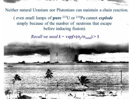 Neither natural Uranium nor Plutonium can maintain a chain reaction. ( even small lumps of pure 235 U or 239 Pu cannot explode simply because of the number.