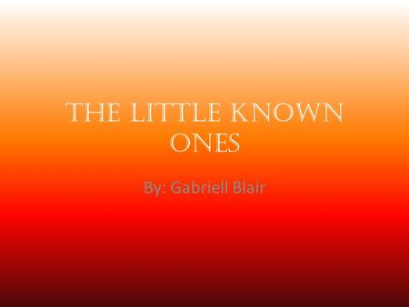 The Little Known Ones By: Gabriell Blair. Benjamin Bradley Ben Bradley was a slave. He was employed at a printing office and later at the Annapolis Naval.
