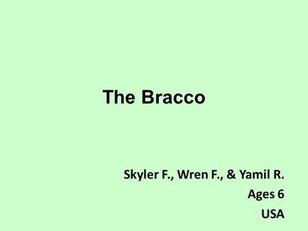 The Bracco Skyler F., Wren F., & Yamil R. Ages 6 USA.