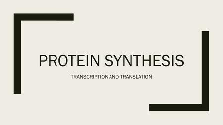 PROTEIN SYNTHESIS TRANSCRIPTION AND TRANSLATION. TRANSLATING THE GENETIC CODE ■GENES: CODED DNA INSTRUCTIONS THAT CONTROL THE PRODUCTION OF PROTEINS WITHIN.