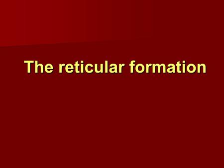 The reticular formation The reticular formation. Reticular Formation Reticular Formation   loosely arranged neuron cell bodies intermingled with bundles.