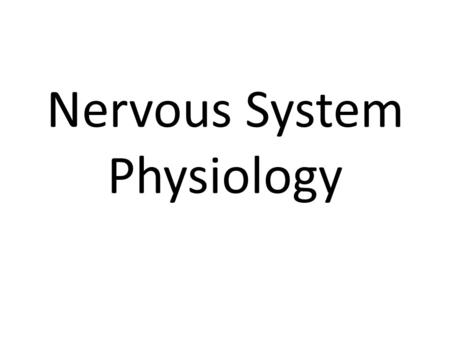 Nervous System Physiology. 3 functions of the nervous system 1) Sensory Input 2) Integration- decisions 3) Motor Output.
