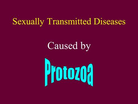 Sexually Transmitted Diseases Caused by. Trichomonas.
