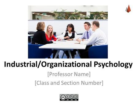 Organisational psychology section