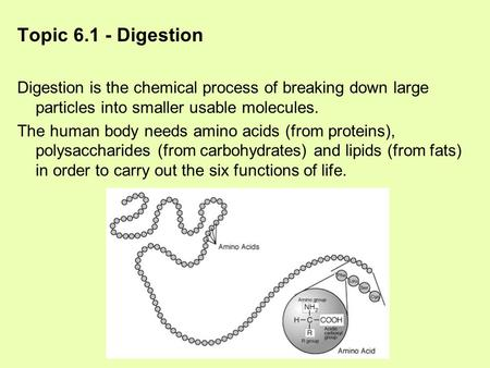 Topic 6.1 - Digestion Digestion is the chemical process of breaking down large particles into smaller usable molecules. The human body needs amino acids.
