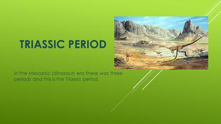 TRIASSIC PERIOD In the Mesozoic (dinosaur) era there was three periods and this is the Triassic period.