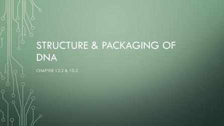 STRUCTURE & PACKAGING OF DNA CHAPTER 12.2 & 10.2.