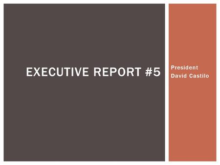 President David Castilo EXECUTIVE REPORT #5. SUCCESS.