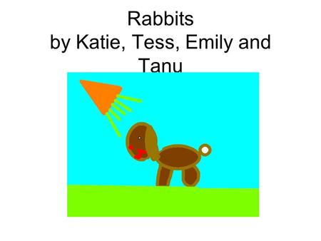 Rabbits by Katie, Tess, Emily and Tanu. The swamp rabbit is a good swimmer.