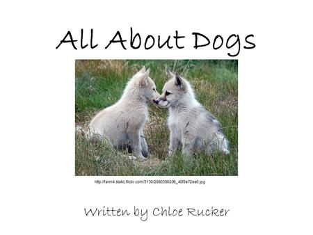 All About Dogs Written by Chloe Rucker