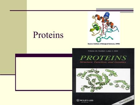 1 Proteins. 2 Notes: Proteins Protein is made of amino acids Amino acids are the building blocks of protein- they are organic acids Contain nitrogen Each.