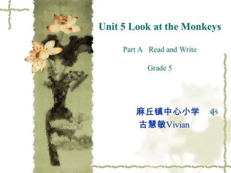 Unit 5 Look at the Monkeys Part A Read and Write Grade 5 麻丘镇中心小学 古慧敏 Vivian.
