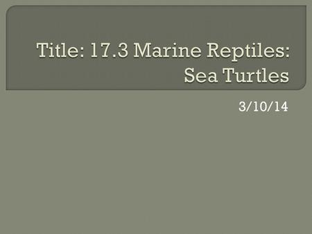 3/10/14.  Students will be able to discuss and describe eight species of sea turtle.  Students will be able to explain threats to the sea turtle population.