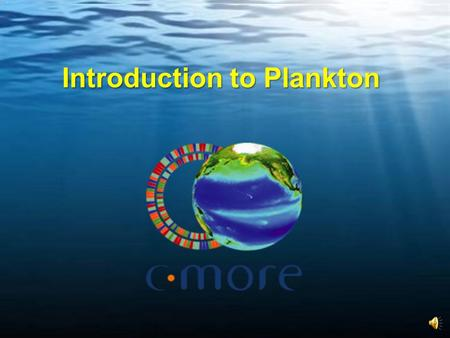 Introduction to Plankton. What Exactly are Plankton? Plants and animals that live in the water and cannot swim against major currents. Plants Animals.