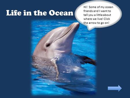 Life in the Ocean Hi! Some of my ocean friends and I want to tell you a little about where we live! Click the arrow to go on!