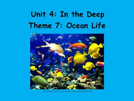 Unit 4: In the Deep Theme 7: Ocean Life