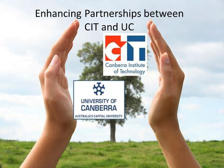 Enhancing Partnerships between CIT and UC. Student articulation – has been very successful Currently 150 pathways across a range of study areas with CIT.