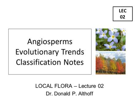 LOCAL FLORA – Lecture 02 Dr. Donald P. Althoff LEC 02 Angiosperms Evolutionary Trends Classification Notes.