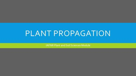 PLANT PROPAGATION IAFNR Plant and Soil Sciences Module.
