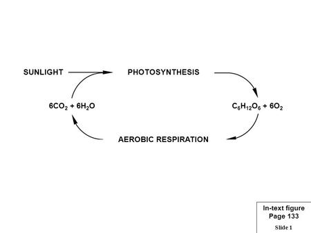 Slide 1 PHOTOSYNTHESIS AEROBIC RESPIRATION C 6 H 12 O 6 + 6O 2 6CO 2 + 6H 2 O SUNLIGHT In-text figure Page 133.