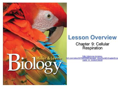 Lesson Overview Lesson Overview Cellular Respiration: An Overview Lesson Overview Chapter 9: Cellular Respiration  hill.com/sites/0078802849/student_view0/unit2/chapter8/con.