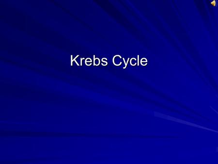 Krebs Cycle Pyruvate Pyruvate Krebs cycle NAD+ Alpha-Ketoglutarate NAD+ ADP + P Succinate Fumerate FAD Malate NAD+