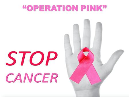 """OPERATION PINK"". Mark 5:24-34 A large crowd followed and pressed around him. 25 And a woman was there who had been subject to bleeding for twelve years."
