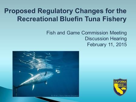 Proposed Regulatory Changes for the Recreational Bluefin Tuna Fishery Fish and Game Commission Meeting Discussion Hearing February 11, 2015 By: Brian J.