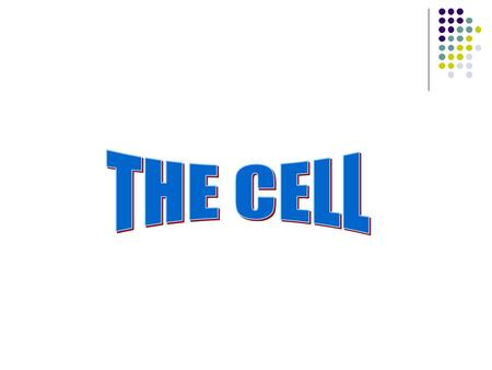 I. Why Study Cells? A. Body is made up of cells: 1. RBC 2. Nerve Cells 3. Skin Cells 4. Muscle Cells.