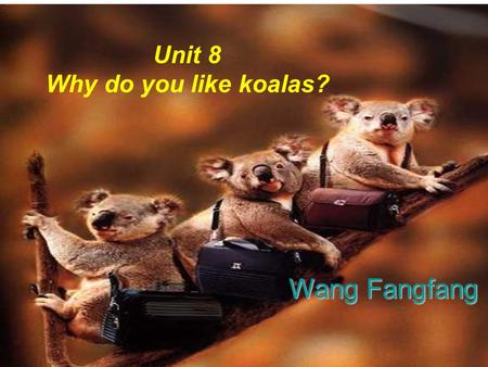 Unit 8 Why do you like koalas? Wang Fangfang Welcome to the zoo.