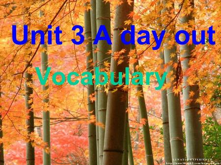 Unit 3 A day out Vocabulary 1.They had a wonderful time in the World Park.( 改为同义句 ) 2.He learns English by himself.( 同上 ) 3.Sandy 同意跟我们一起去. 4. 整个世界都摆在了我们的面前.