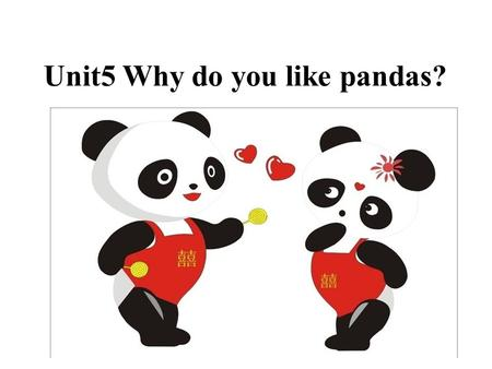 Unit5 Why do you like pandas?. lionelephant tiger giraffe panda cat koala No, I'm a pet. We're all animals.
