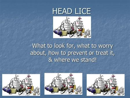 HEAD LICE What to look for, what to worry about, how to prevent or treat it, & where we stand!