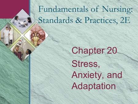 Chapter 20 Stress, Anxiety, and Adaptation Fundamentals of Nursing: Standards & Practices, 2E.